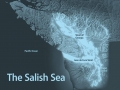 The Salish Sea explained