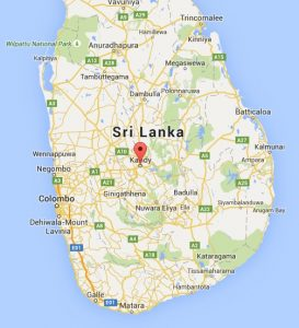 Polonnaruwa Meteorite | Professor Chandra Wickramasinghe
